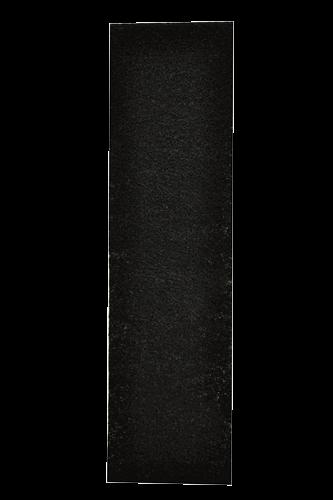 Fellowes Kohlefilter Klein für DX5 in schwarz