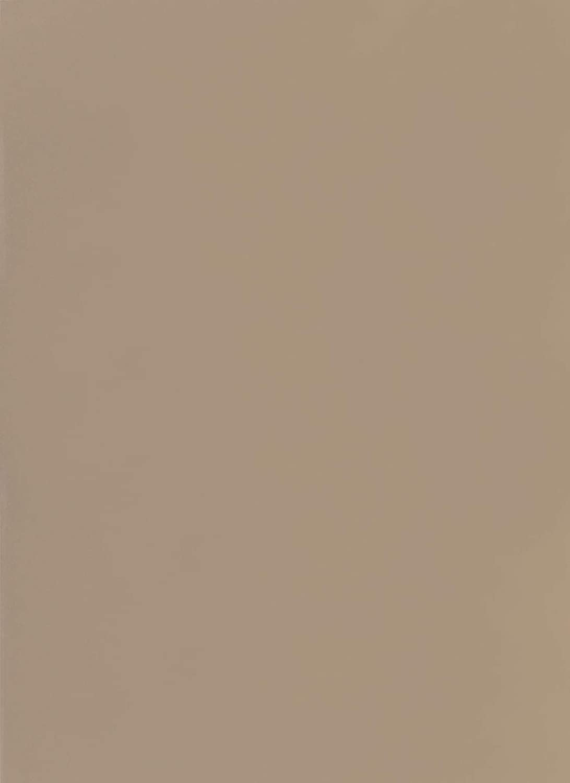 folia 6173 Fotokarton, (B) 500 x (H) 700 mm, 300 g/qm, Cappuccino