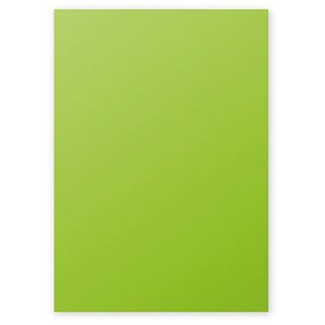 Clairefontaine Pollen Papier Minze 160g/m² DIN-A4 50 Blatt