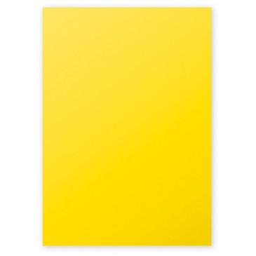 Clairefontaine Pollen Papier Sonne 210g/m² DIN-A4 25 Blatt